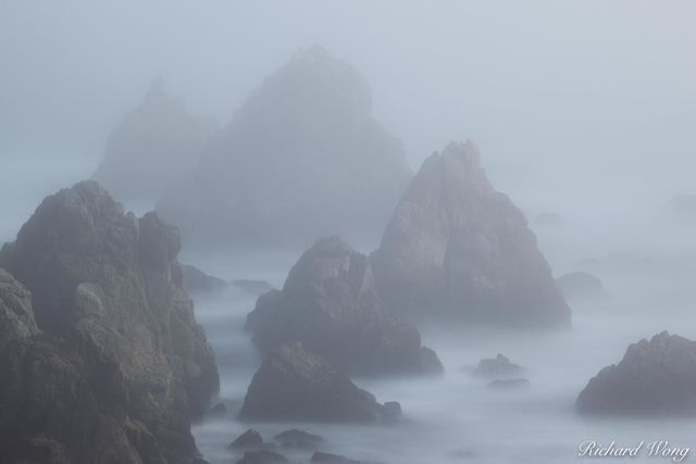 Bodega Head Seastacks in Fog, Sonoma Coast, California, photo