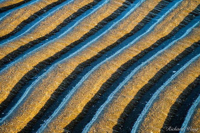 Sand Pattern Abstracts, Alameda, California, photo