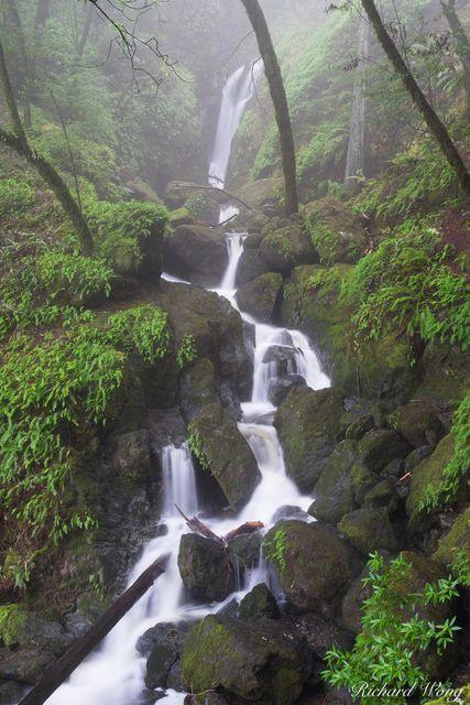 Cataract Falls in Fog / Mount Tamalpais Watershed, Marin County, California, photo