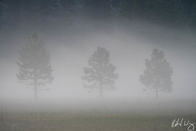 fog, three threes, yosemite valley, yosemite national park, california, photo