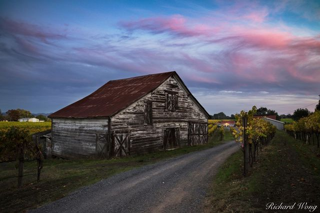 Dry Creek Valley Barn at Sunset During Fall Season, Healdsburg, California, photo