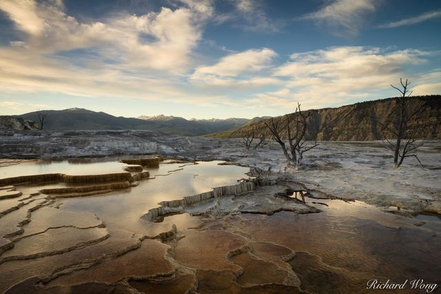 Mammoth Hot Springs at Sunset, Yellowstone National Park, Wyoming, photo