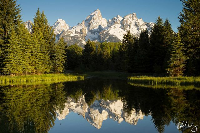 Schwabacher Landing, Grand Teton National Park, Wyoming, Photo