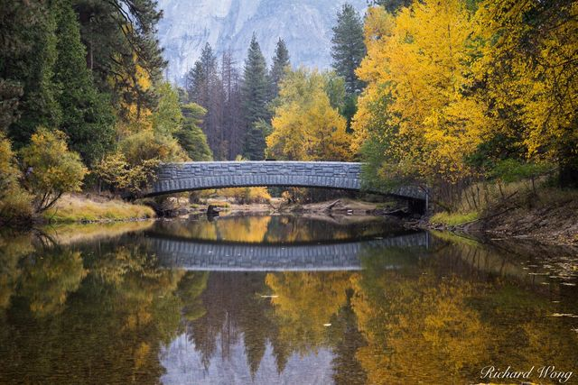 Sentinel Bridge & Merced River Fall Colors, Yosemite National Park, California, photo