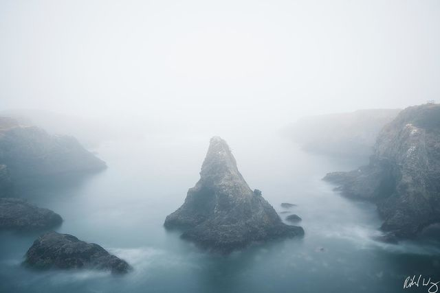 Foggy Morning, Mendocino Headlands State Park, California, Photo