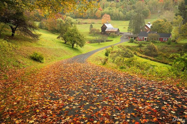 Sleepy Hollow Farm, Pomfret, Vermont, Photo