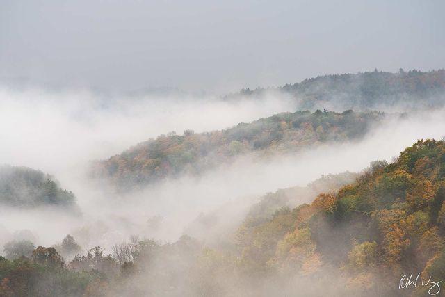 New England Fog