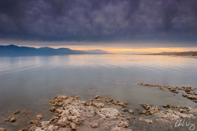 Salt Creek, Salton Sea, California, photo