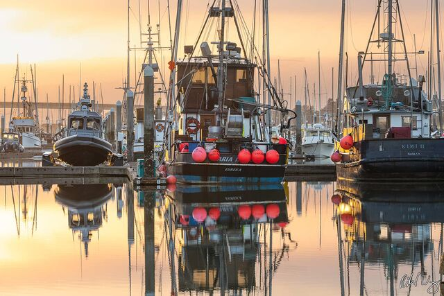 Woodley Island Marina Sunrise, Eureka, California, photo