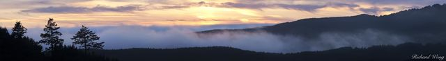 Summer Fog Rolling in Over Ridge at Sunset, Point Reyes National Seashore, California, photo
