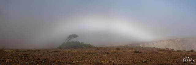 Fogbow Panoramic