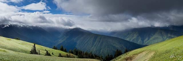 Hurricane Ridge Panoramic