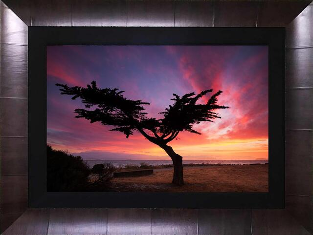 Limited Edition Framed Lumachrome HD Acrylic Face Mount - Ready To Hang