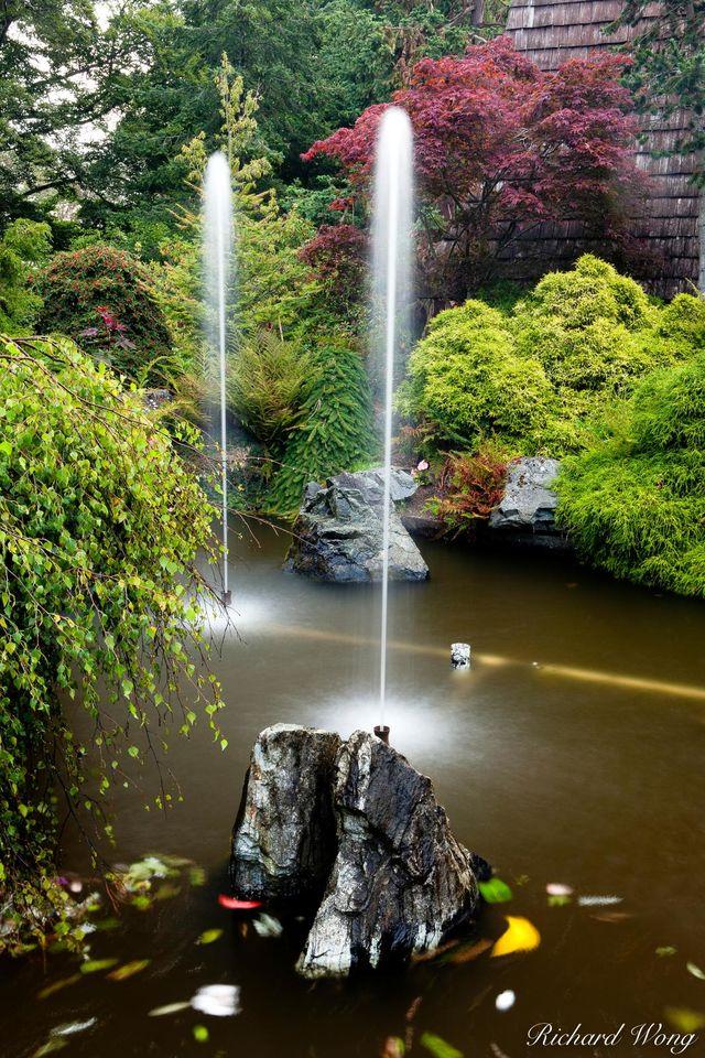 Garden Fountains print