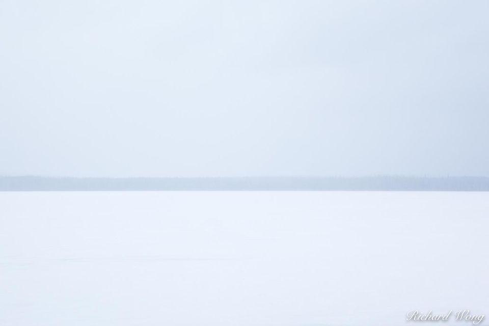Frozen print