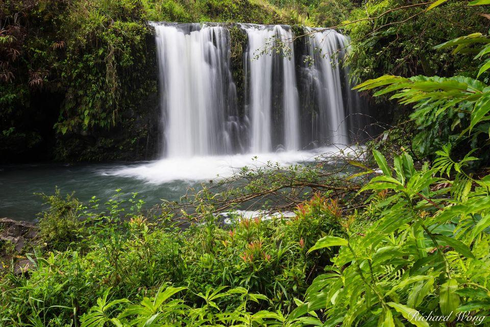 Pua'a Ka'a Waterfall print