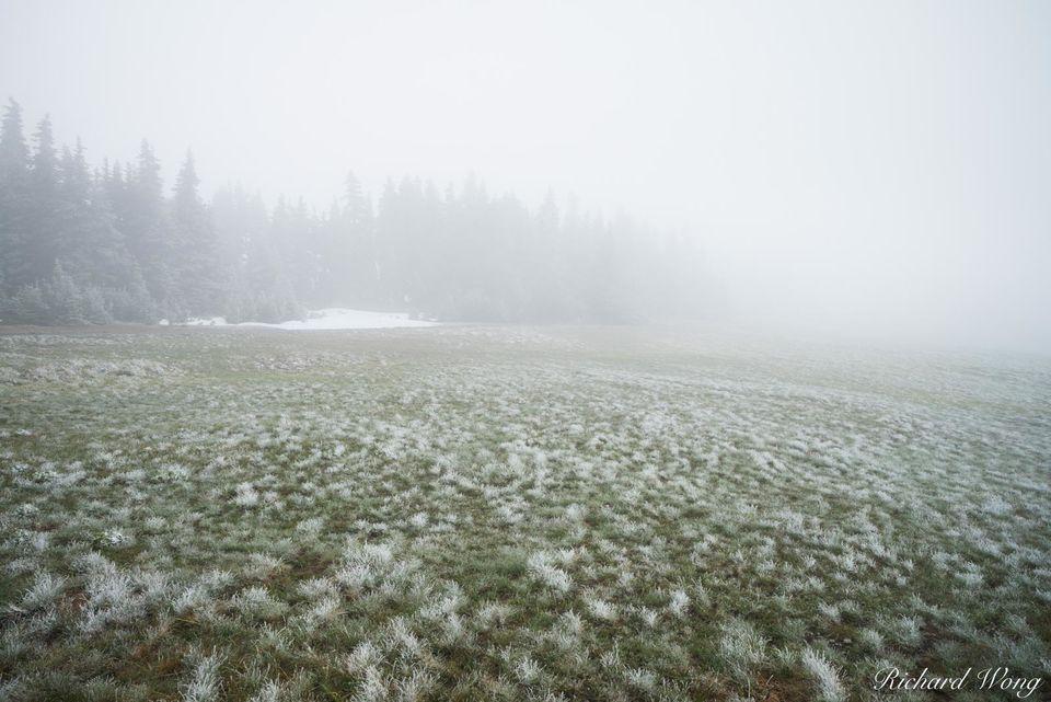 Snow Ridge print