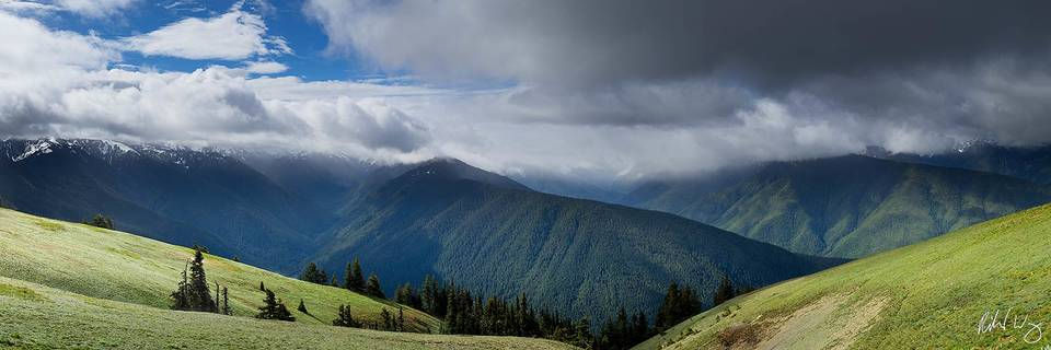 Hurricane Ridge Panoramic, Olympic National Park, Washington, photo
