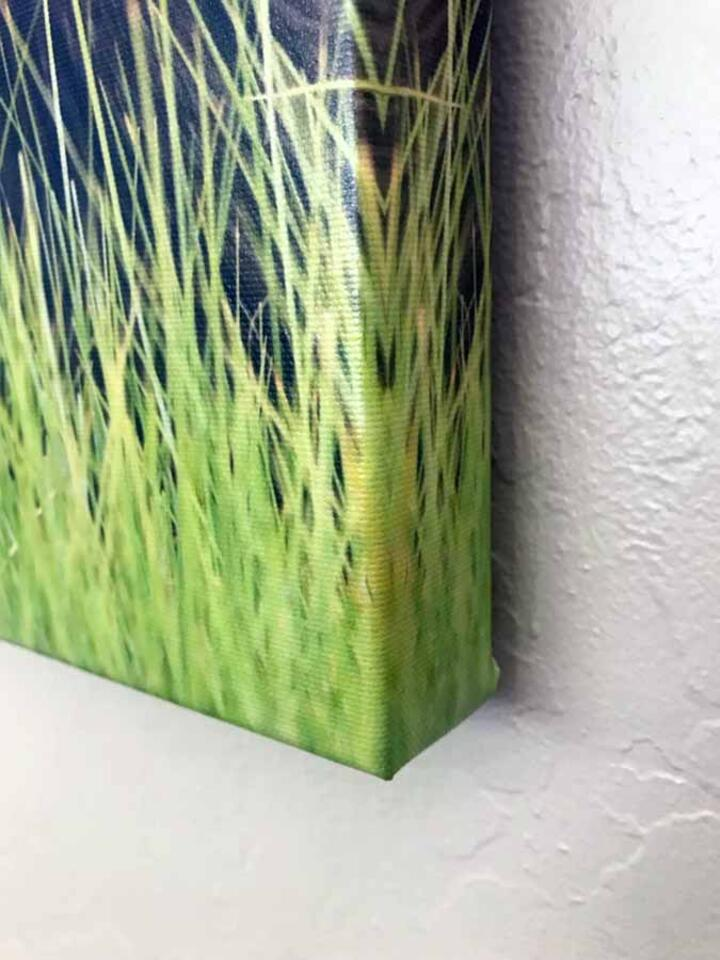 Canvas Gallery Wrap - Ready To Hang