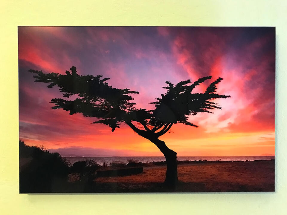 Limited Edition Lumachrome Acrylic Print - Ready To Hang