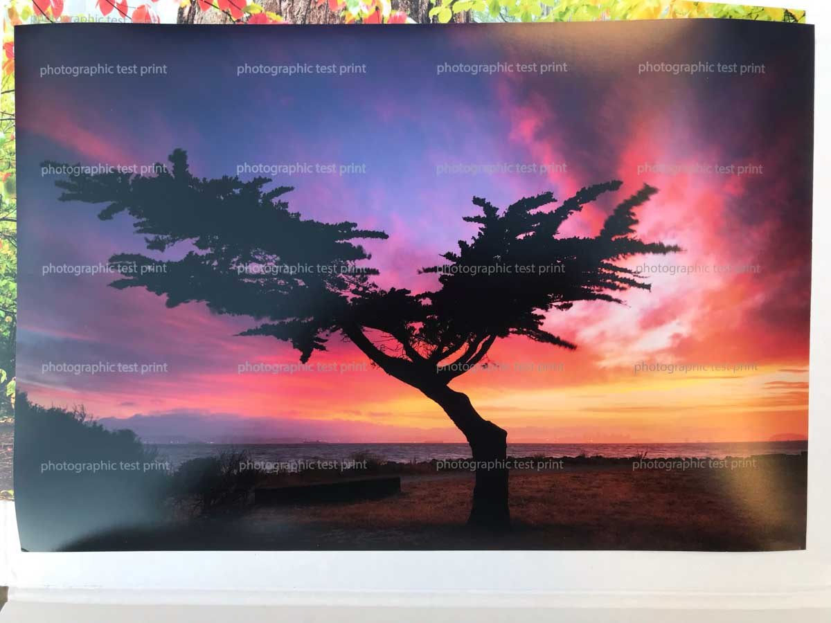 Fuji Crystal Archive DPII Matte Print by WhiteWall