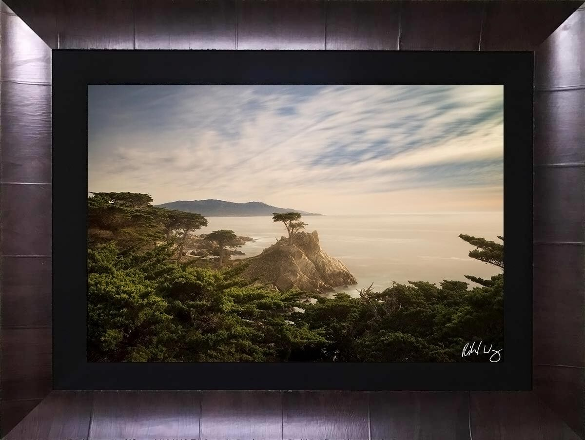 The Lone Cypress ROMA Tabacchino framed acrylic face mount print