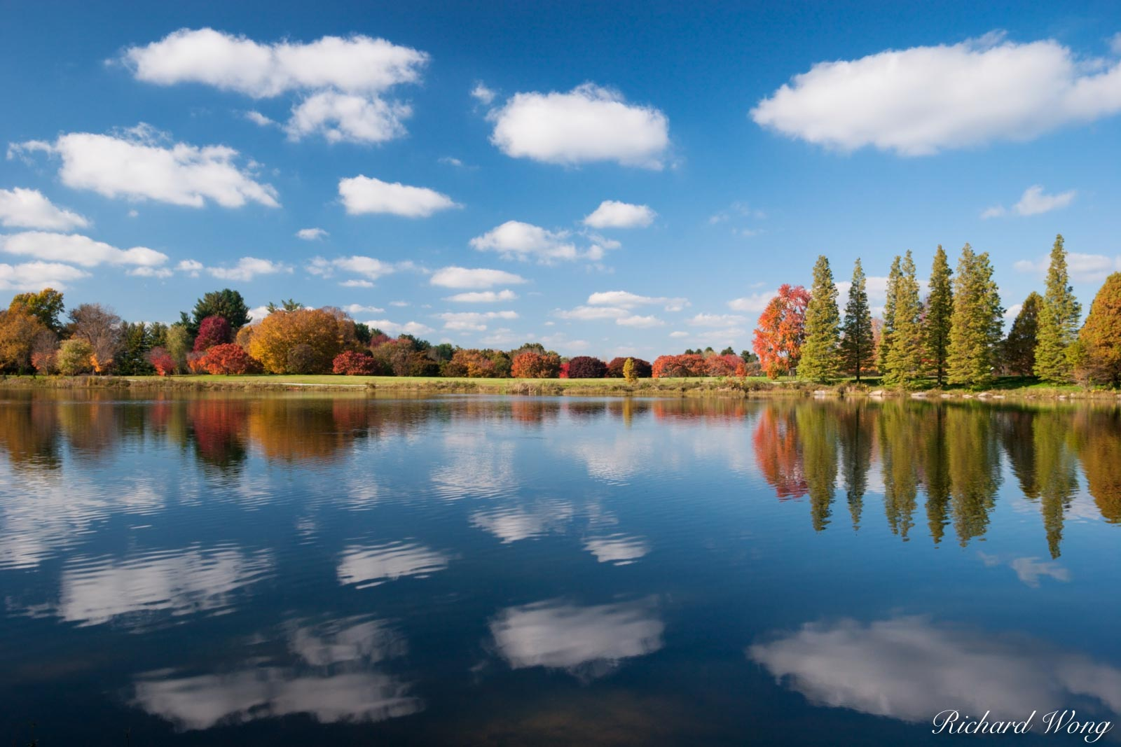 Fall Foliage Reflection in Lake Nevin, Bernheim Arboretum, Clermont, Kentucky, photo, photo