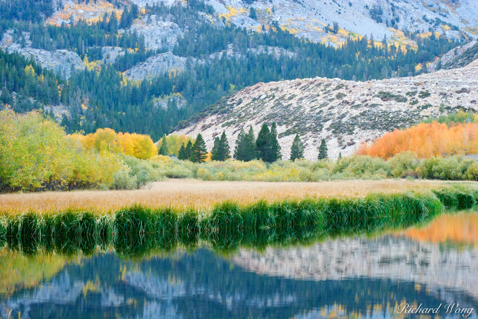 North Lake Reflection, Eastern Sierra, California, photo, photo