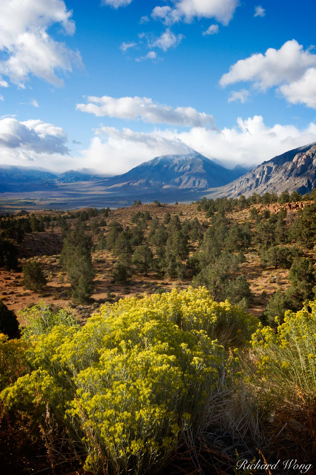 Owens Valley Overlook from U.S. Highway 395, Eastern Sierra, California, photo, photo