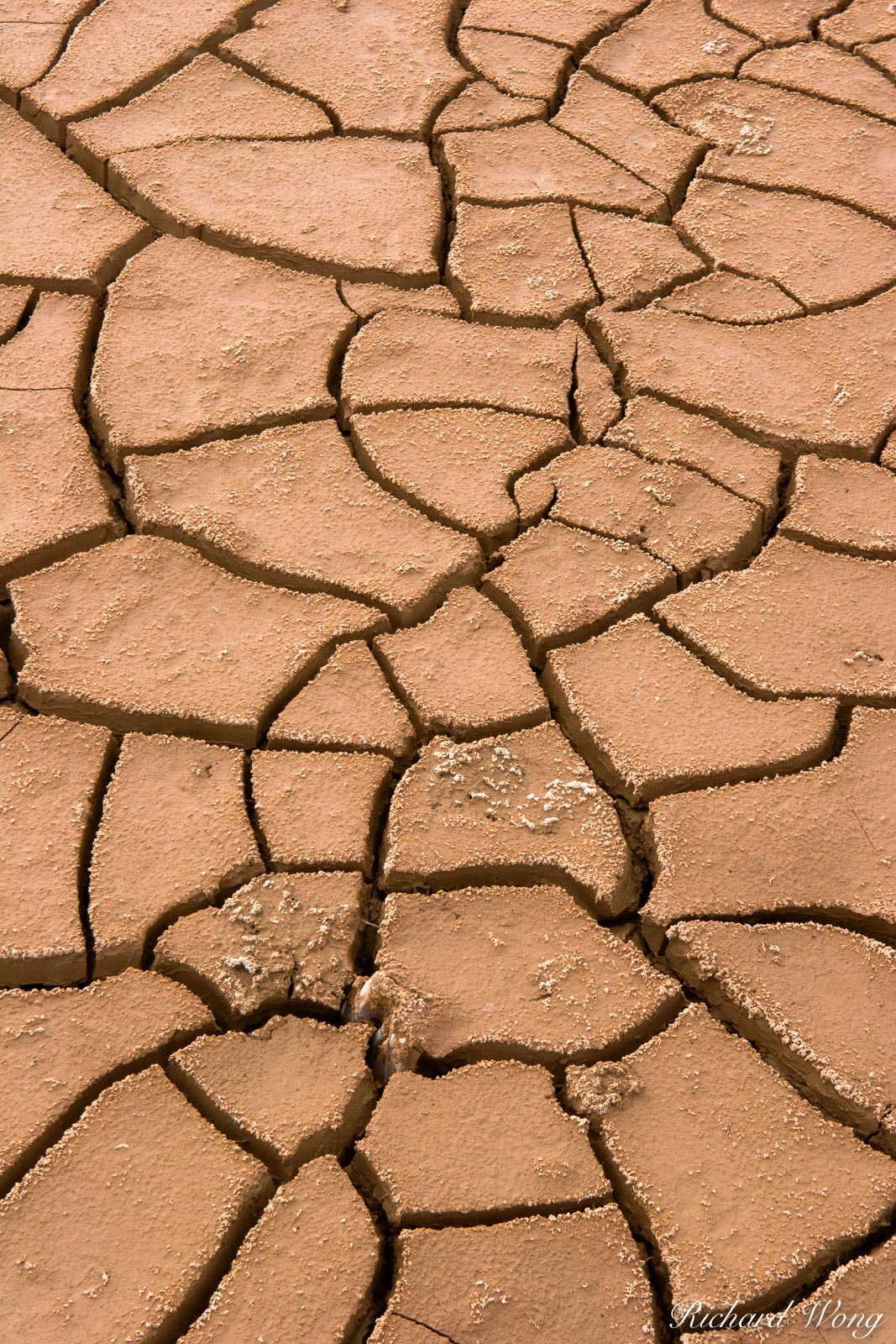 Dry Mud Cracks, Bombay Beach, California, photo, photo