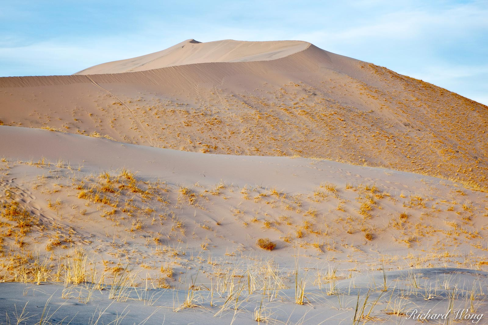 Kelso Dunes, Mojave National Preserve, California, photo, photo