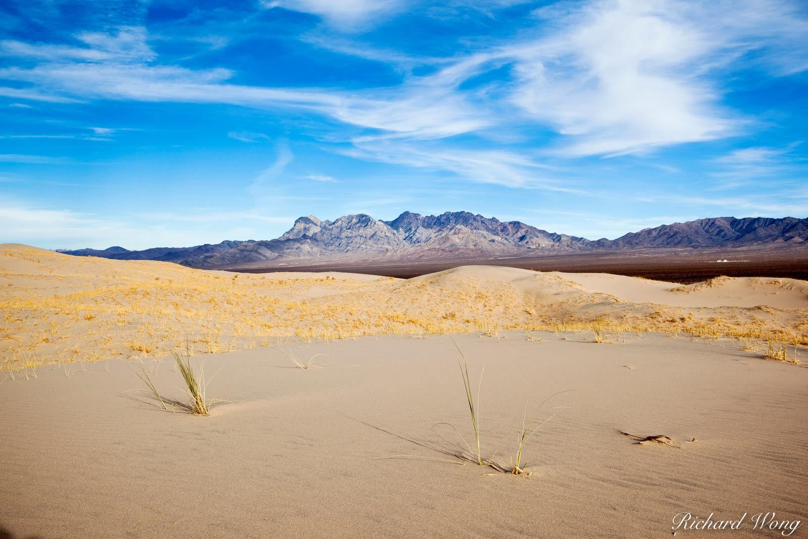 Scenic View of Providence Mountains from Kelso Dunes, Mojave National Preserve, California, photo, photo