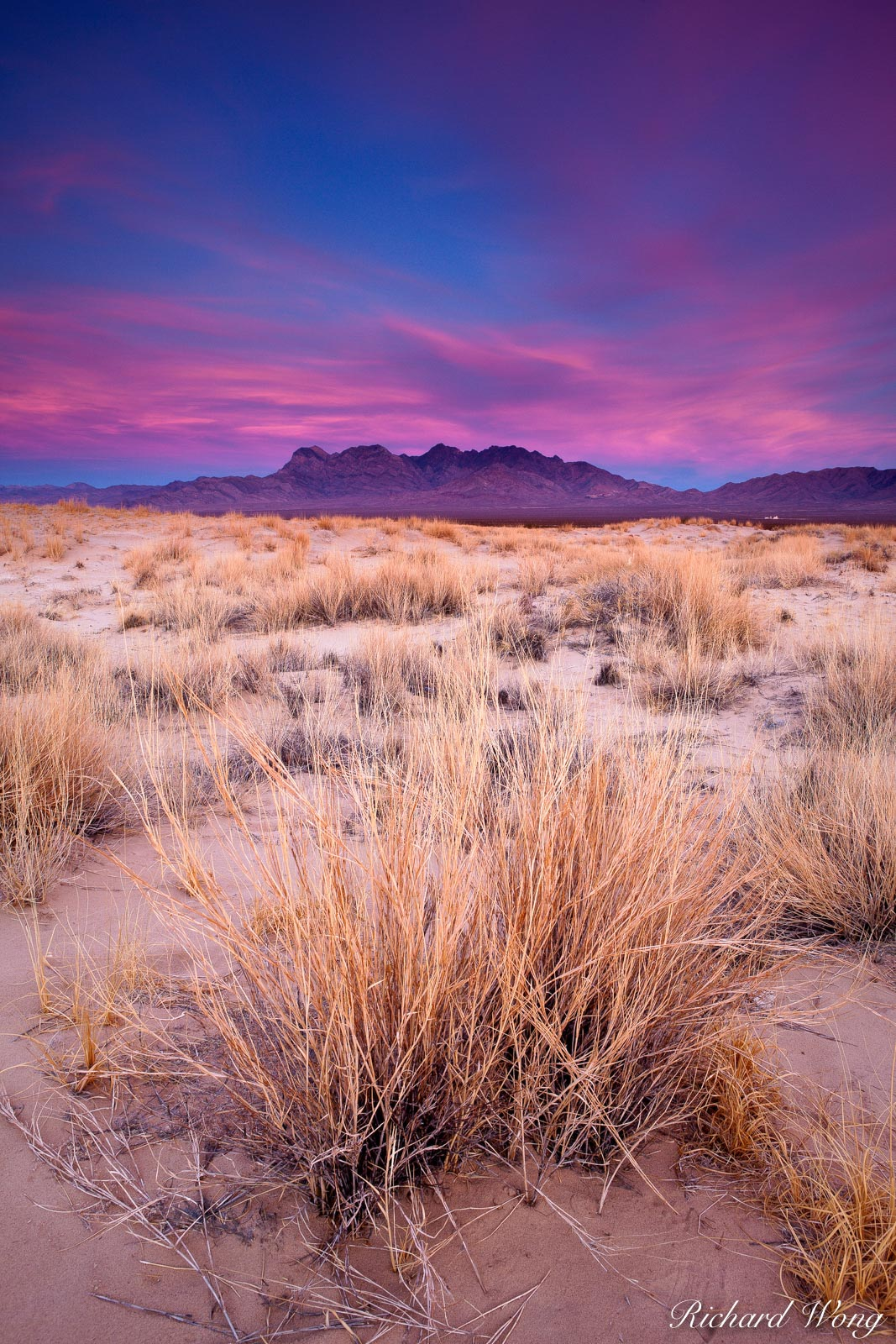 Providence Mountains View from Kelso Dunes, Mojave National Preserve, California, photo, photo