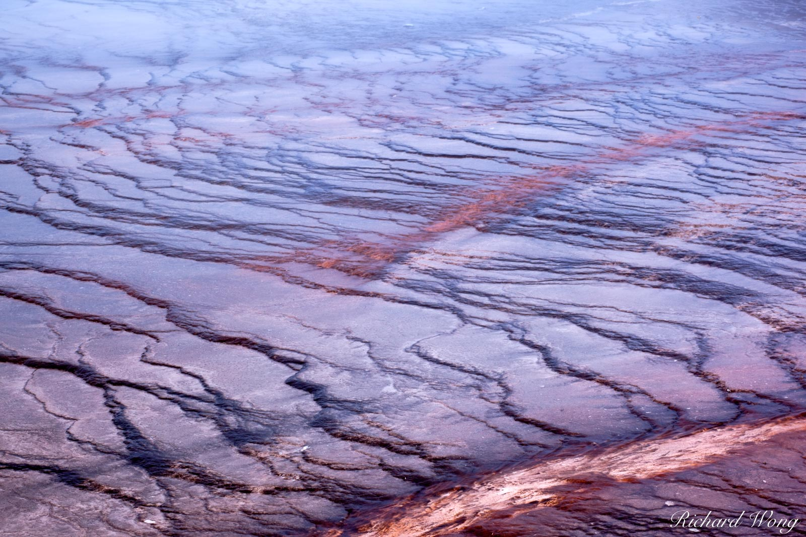 Grand Prismatic Spring Bacterial Mat Patterns, Yellowstone National Park, Wyoming, photo, photo