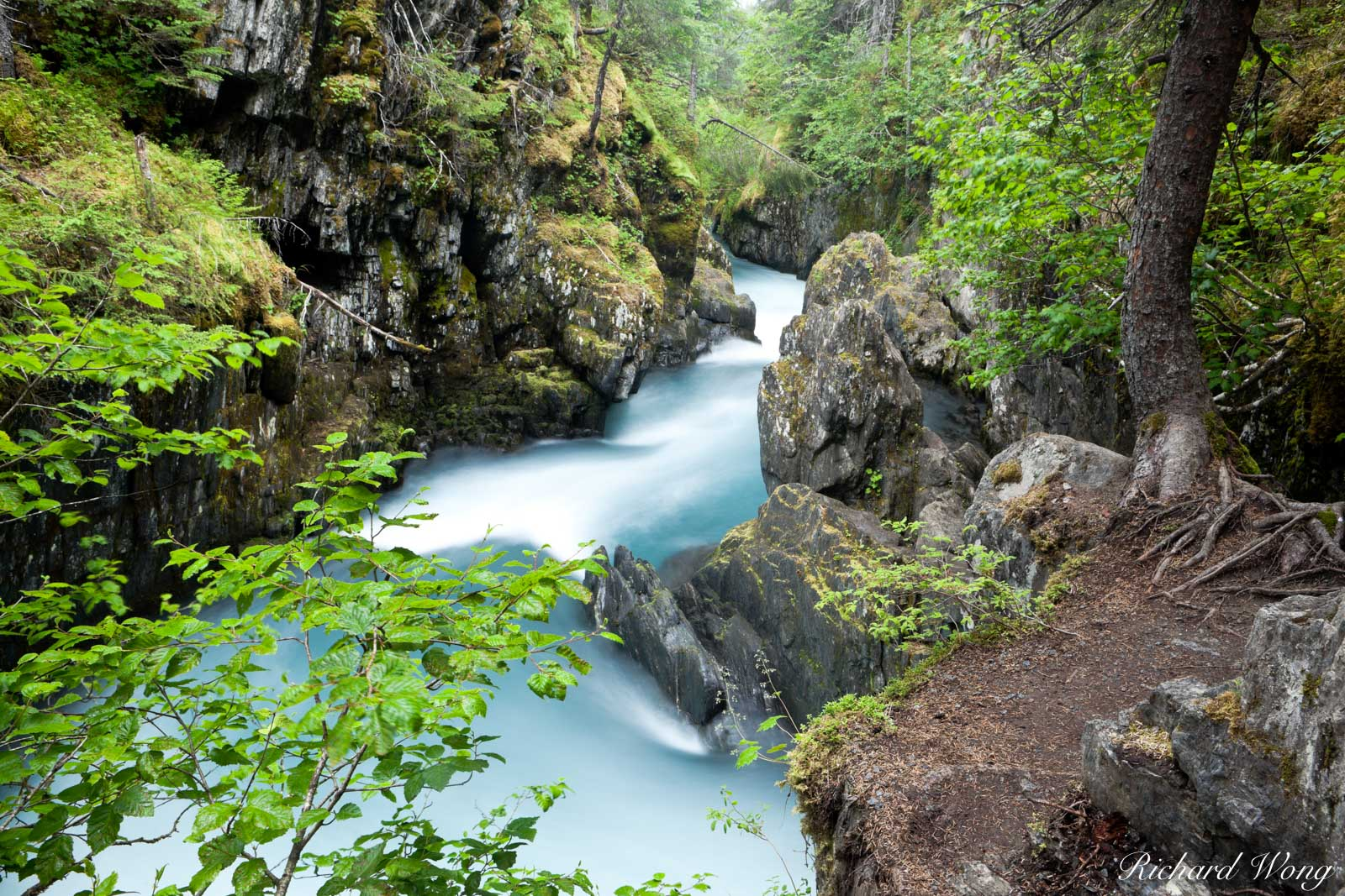 Winner Creek Gorge, Chugach National Forest, Alaska, photo, photo