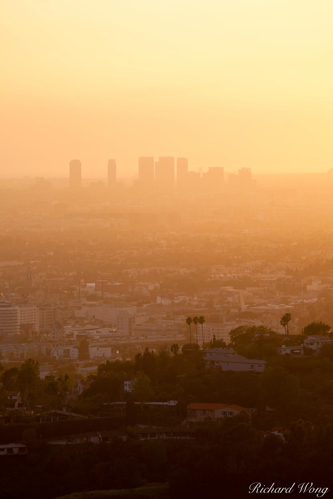 West L.A. Skyrises at Sunset from Griffith Park, Los Angeles, California, photo, photo