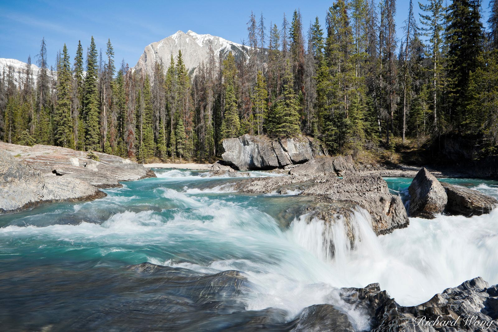 Powerful Rapids of Kicking Horse River About to Flow Through Natural Bridge with Mt. Dennis in Background, Yoho National Park, British Columbia, Canada, Photo