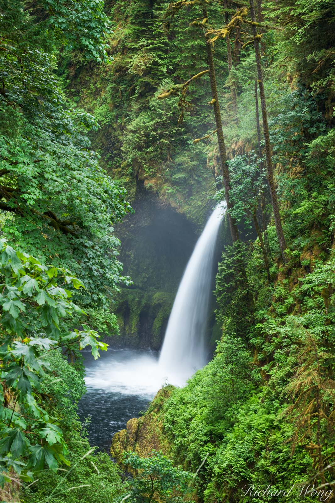 Metlako Falls, Columbia River Gorge National Scenic Area, Oregon, photo, photo