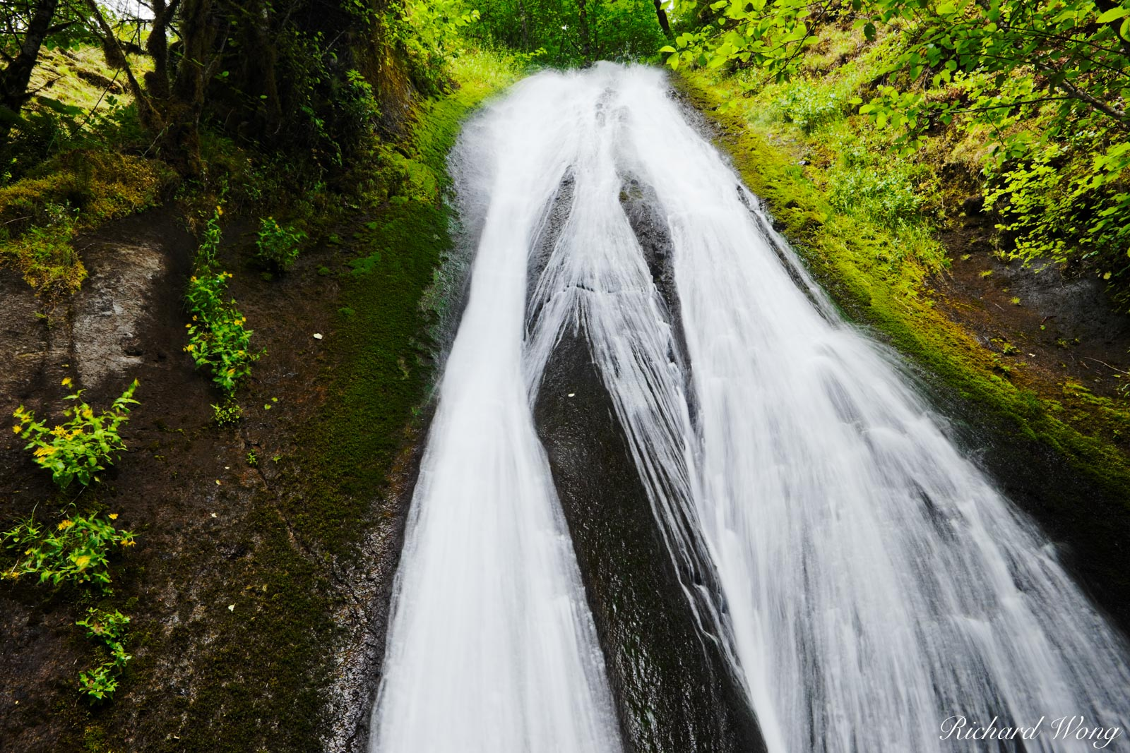 Munras Falls / Tanner Creek, Columbia River Gorge National Scenic Area, Oregon, photo, photo