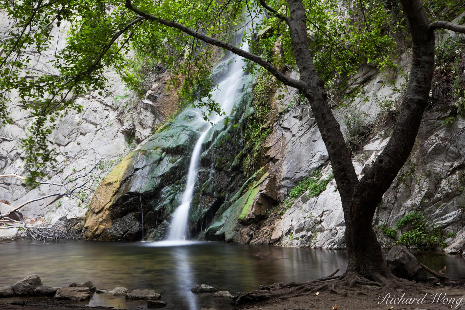 Sturtevant Falls at Big Santa Anita Canyon, Angeles National Forest, California, photo, photo
