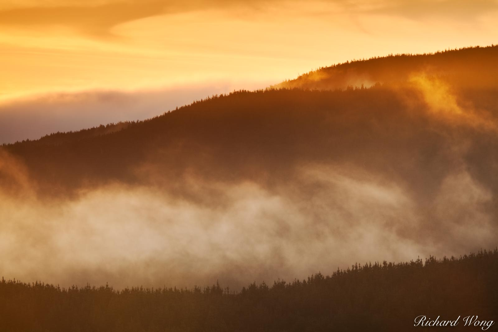 Fog Rolling in Over a Coastal Ridge at Sunset, Point Reyes National Seashore, California, photo, photo