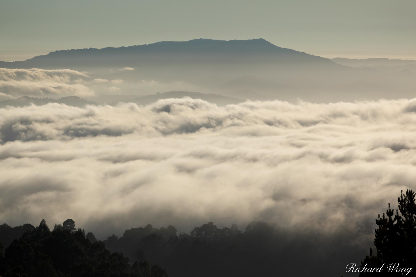 Vollmer Peak Scenic View of Bay Area Fog at Sunset With Mount Tamalpais in Background, Tilden Regional Park, California, photo, photo