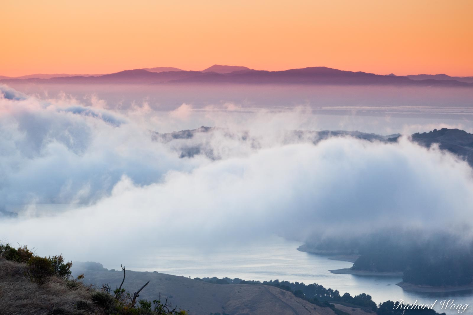 View of Sunset Fog Above San Pablo Reservoir From Tilden Regional Park, Berkeley Hills, California, photo, photo