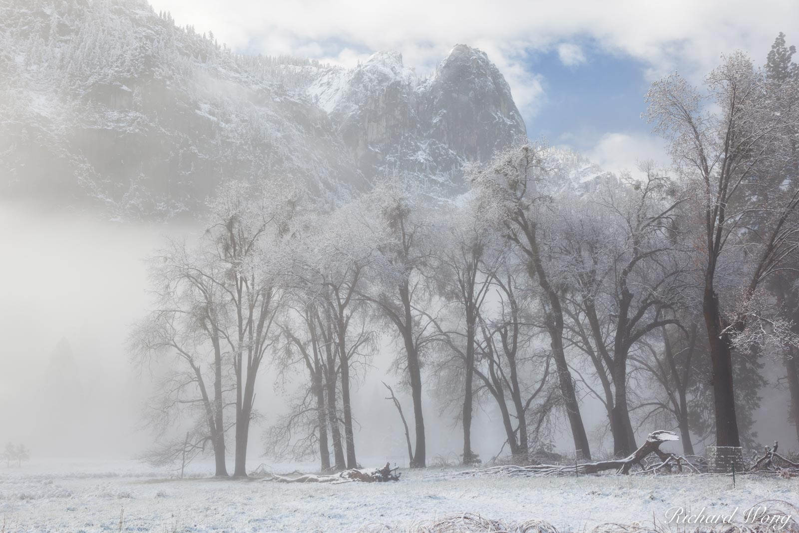 Foggy Sunrise at Cook's Meadow After Spring Snowstorm, Yosemite National Park, California, photo, photo