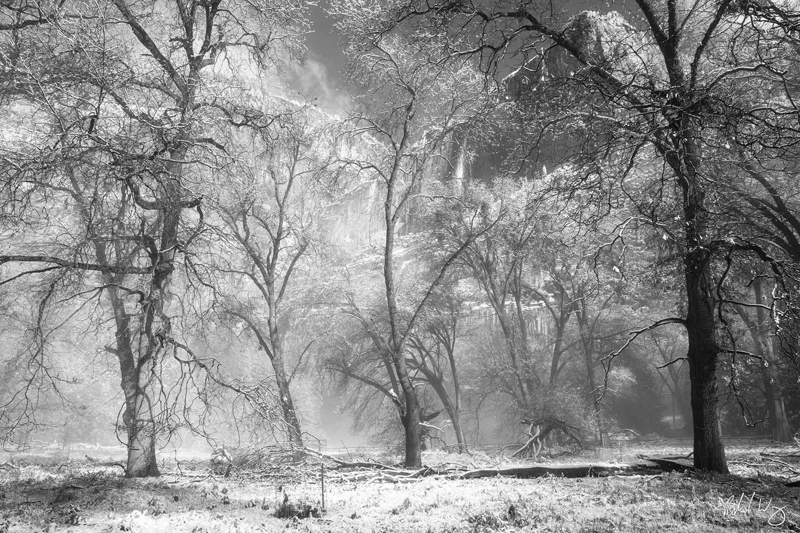 Black and White Photo: Yosemite Falls After Spring Snowstorm, Yosemite National Park, California
