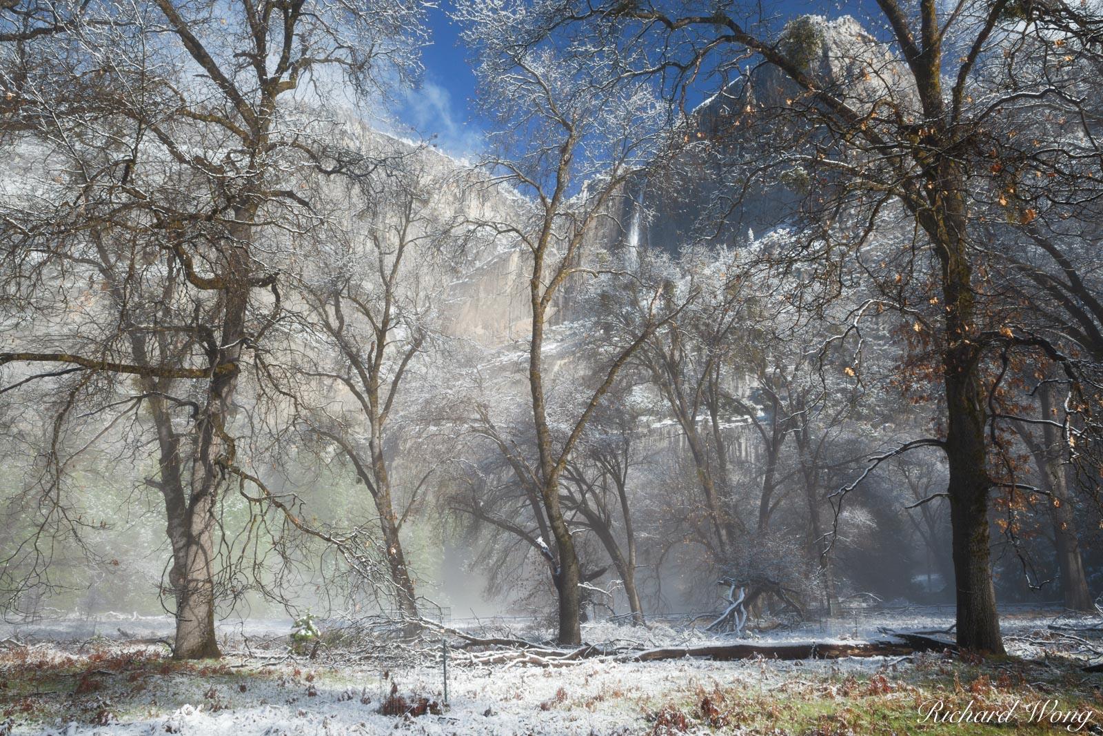 Yosemite Falls After Spring Snowstorm, Yosemite National Park, California, photo, photo