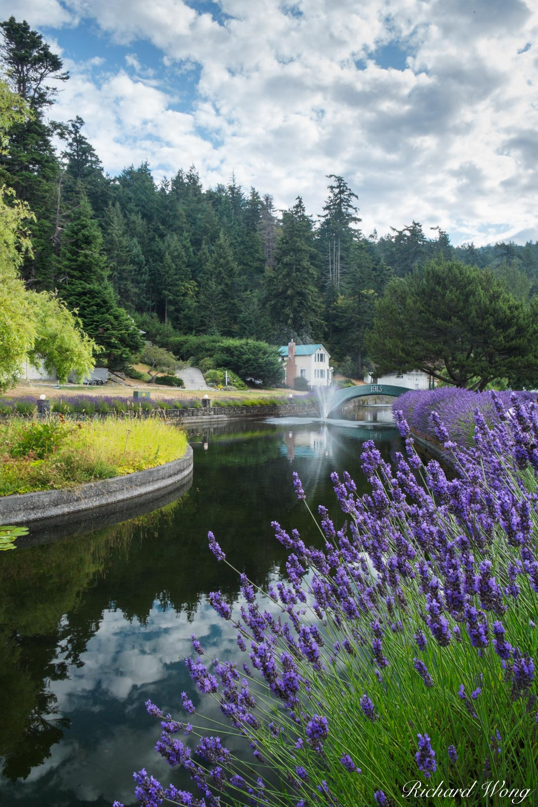 Lavender and Water Fountain at Rosario, Orcas Island, Washington, photo, photo