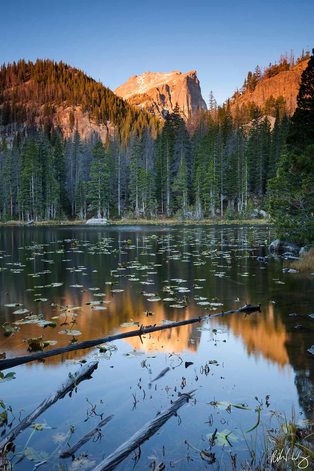 Nymph Lake, Rocky Mountain National Park, Colorado, Photo, photo