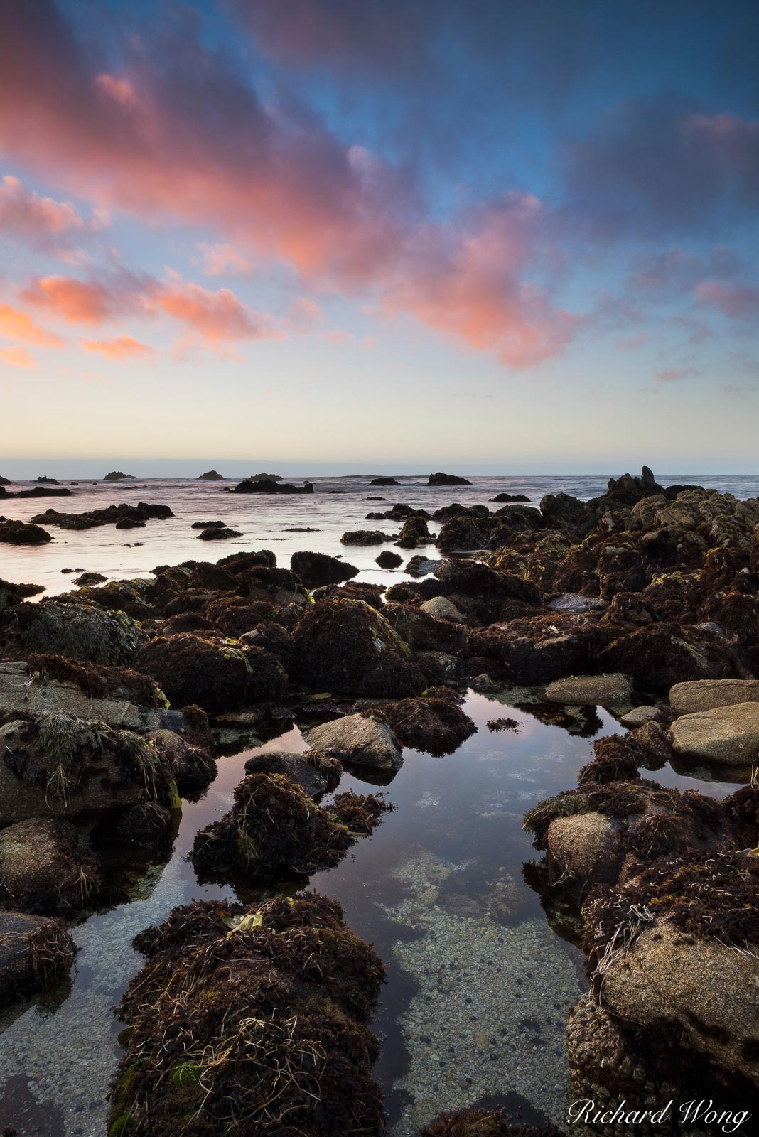 Asilomar State Beach Tide Pool at Sunset, Pacific Grove, California, photo, photo