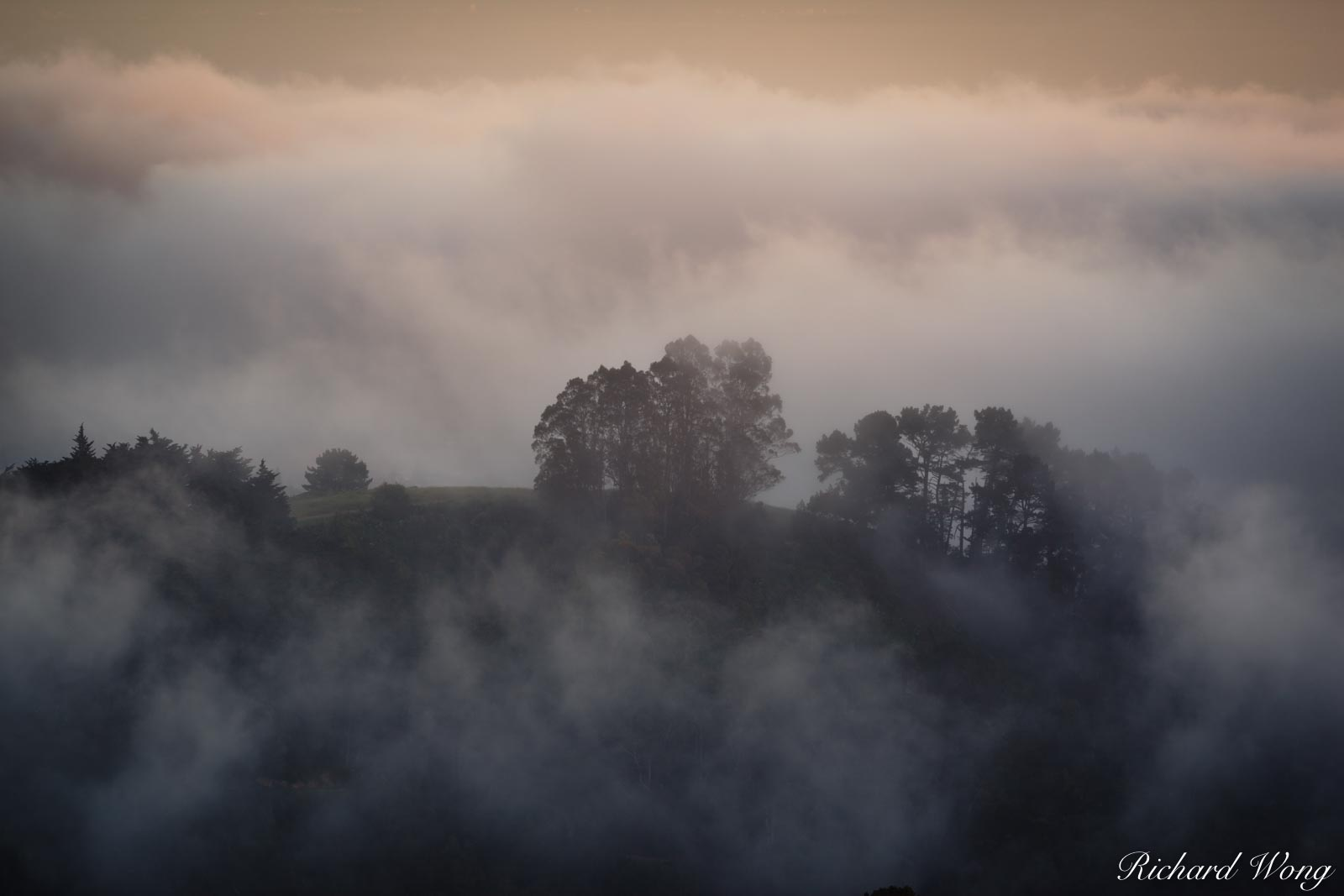 Fog in Grizzly Peak, Berkeley Hills, California, photo, photo